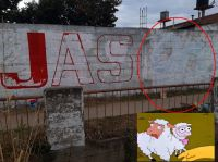 "¡Quítate tú! Candidata a diputada provincial ""blanquea"" paredes para poner su nombre"