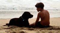 Un nene y su perro de asistencia fueron echados de un hotel y un shopping