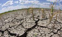 Emergencia agropecuaria en el Norte: uno de los proyectos que debatirá la Cámara de Senadores