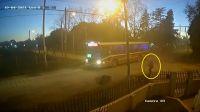 |TERRIBLE VIDEO| Mañana mortal: una mujer fue detrás del colectivo y terminó aplastada