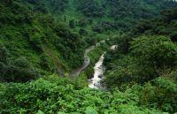 ¡Ecocidio en Las Yungas! Gravísima denuncia de ambientalistas contra una conocida firma