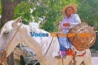¡Tamales calientes que quiere la gente!: a caballo los vende por las calles salteñas