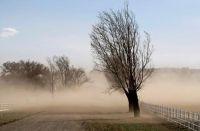 Alerta amarilla en Salta: el viento zonda llegará este martes 14 de septiembre
