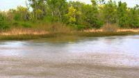 Macabro hallazgo: encuentran un cadáver calcinado en la orilla del río