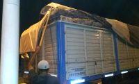 Golpe al contrabando en Salta: incautan vacas y 20.000 kilos de una materia sin documentación