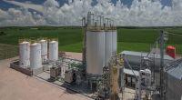 ¿Se dilata la prórroga de la ley de Biocombustibles?: la expectativa está puesta en Diputados