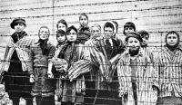 Holocausto. Fuente: (Twitter)