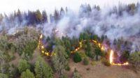 El Bolsón: Allanan la vivienda del  principal sospechoso de haber iniciado el fuego