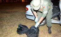 Dos detenidos en Salta por transportar cocaína