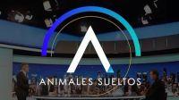 Animales Sueltos Fuente:(Instagram)