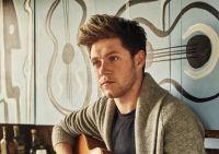El talento de Niall Horan una vez más fue reconocido y sus fans palpitan de la emoción