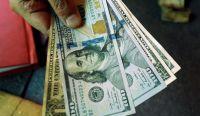 Dólares. Fuente: (Twitter)