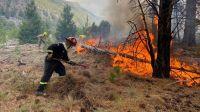 """""""De Salta al Sur"""": en la provincia se inició una colecta para ayudar a los damnificados por los incendios"""
