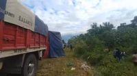 Volcó un camión repleto de harina, y la gente aprovechó para llevarse las bolsas