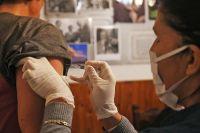 Salta recibirá 78.960 dosis de la vacuna antigripal y así será el esquema de aplicación