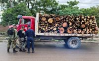 Transportaba productos forestales sin documentación y fue sancionado