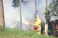 Muerte y desesperación en el norte salteño: el dengue avanza a paso firme