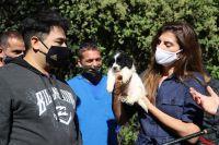 Día del Animal, un recorrido por el centro de adopción más importante de la ciudad