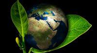 Día Mundial del Medio Ambiente Fuente:(Instagram)