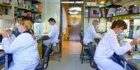 Se vienen las vacunas de la segunda generación contra el COVID-19