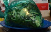 Trasladaban 850 kilos de hojas de coca cuando ocurrió lo inesperado