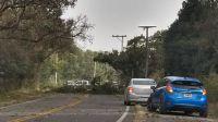  FOTOS Y VIDEOS  Ingresó el viento Zonda a Salta y provocó serios destrozos: recomiendan precaución