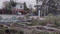 Consecuencias del viento Zonda: al menos siete familias tuvieron que ser asistidas
