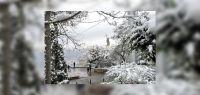 Ola polar y alerta violeta: ¿Se viene la nieve a Salta?